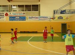 xxl basket 2